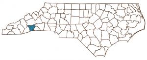 henderson county graphic
